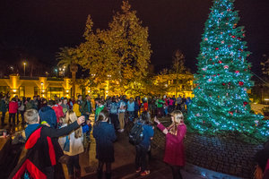 Christmas Tree Lighting, 2014
