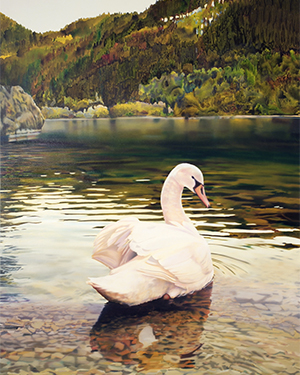 Environmental Reflections art piece featuring a swan on water