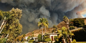 Pepperdine Law Launches Disaster Relief Clinic to Serve Victims of the Woolsey Fire